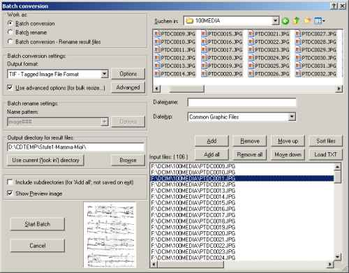 Batch-Conversion Dialog Irfanview